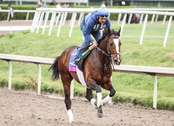 Friday's Pegasus Trackside Report