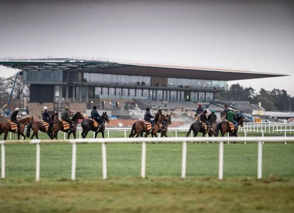 Irish racing back on June 8 behind closed doors