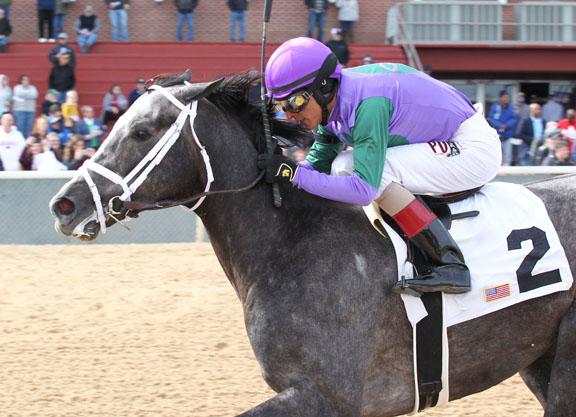Intrepid Heart Returns Lows to Oaklawn Winner's Circle