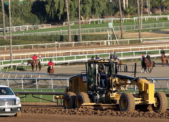Amid Breakdown Epidemic, Santa Anita to Ban Race-Day Medication
