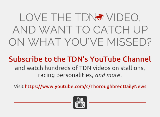 TDN YouTube interstitial – 11/18/19