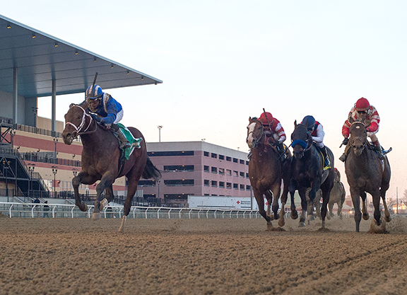 Daaher Colt Benefits from Breakneck Pace in Gotham