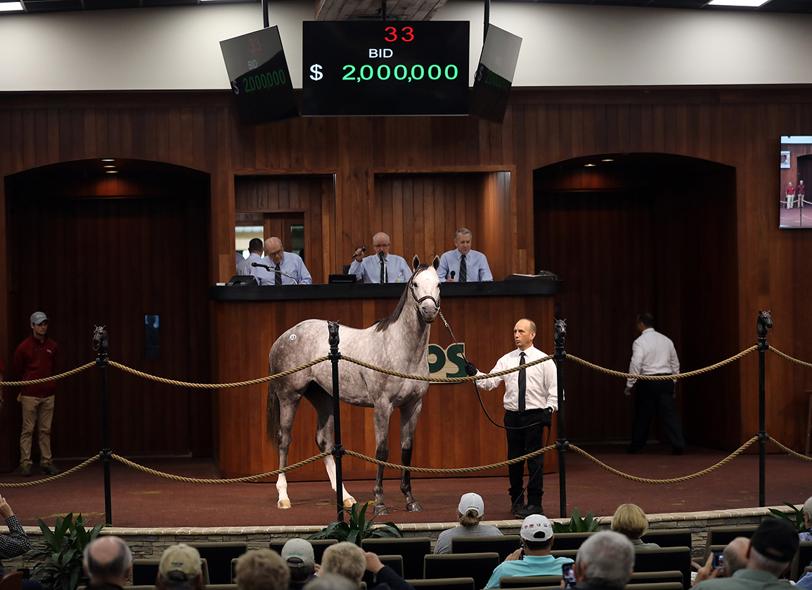 Two-Mill Tapit Topper Headlines OBS March Opener