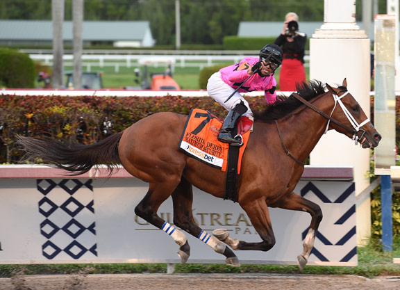 No Catching New Year's Day Colt in Florida Derby