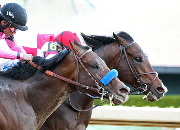 Omaha Beach Noses Out Game Winner In Rebel Thrilleromaha
