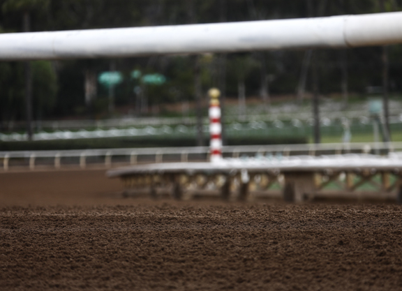Santa Anita: Picture Getting Clearer as Entries Taken, but Questions Remain