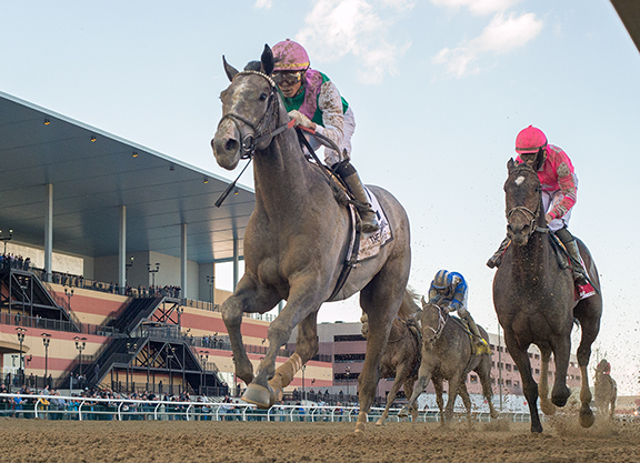 Son of Close Hatches Scores Narrow Victory in Wood Memorial