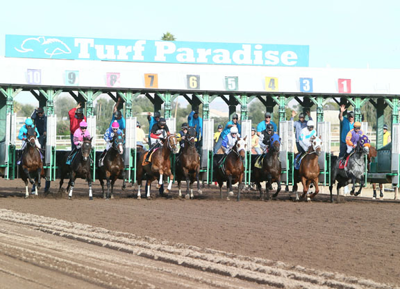 Arizona HBPA to Gaming: Pull Turf Paradise Signal from Stronach Affiliates