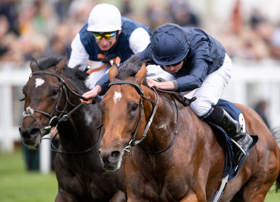 Galileo Colt Takes Blue Riband Trial