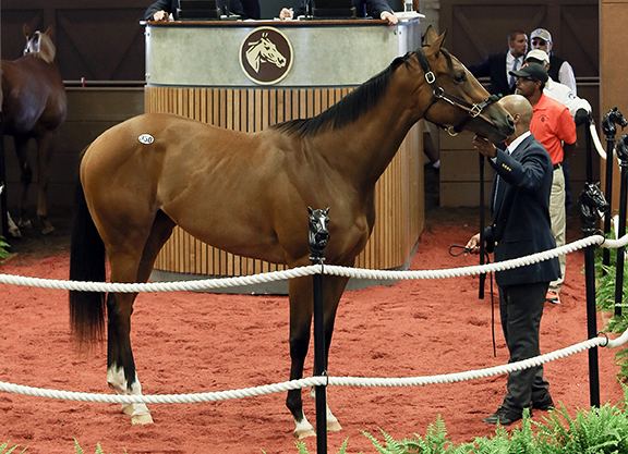 Records Fall as Midlantic Sale Concludes