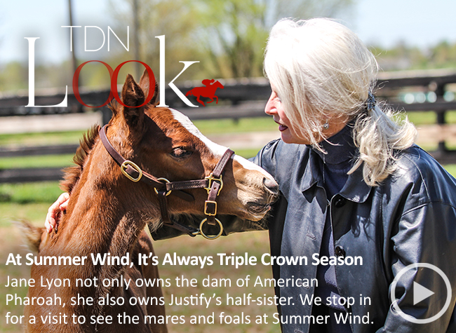 TDN Look – June 2019 – Summer Wind – 5/20/19