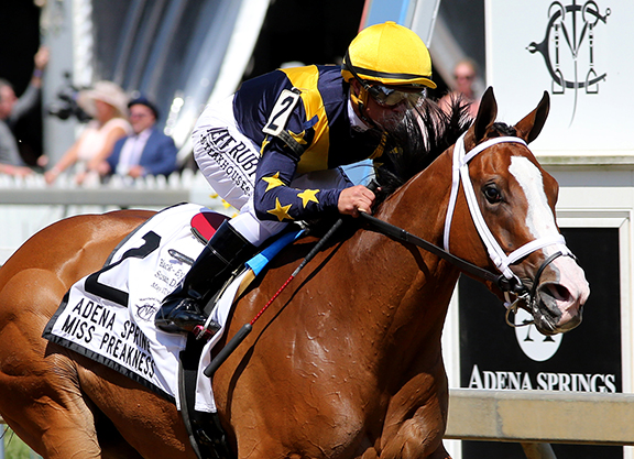 Into Mischief's Covfefe Sizzles in Miss Preakness RompInto