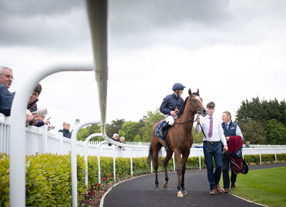 War Front Filly A Stakes Winner On Debut
