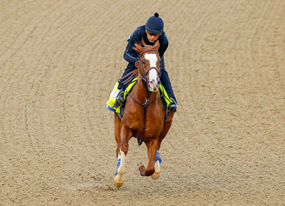 Lack of Star Power Begets Wealth of Opportunity in Preakness