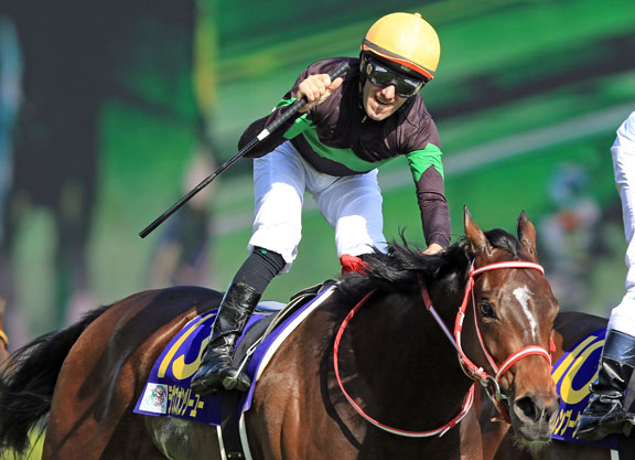 Deep Impact Filly Swoops For Oaks Win