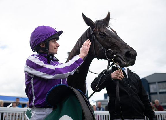 Scat Daddy's So Perfect Scores at Naas