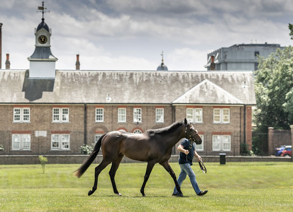 Mohican Heights Tops London Sale