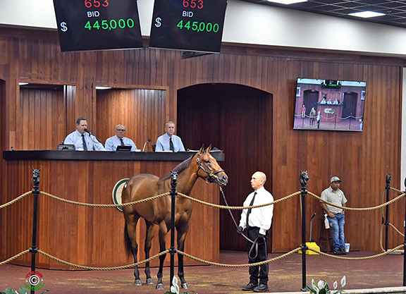 Steady Trade Continues at OBS June