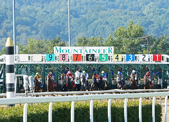 Mountaineer Park To Be Sold