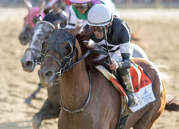 Awesome Again's Sir Winston Pulls Off Belmont Upset