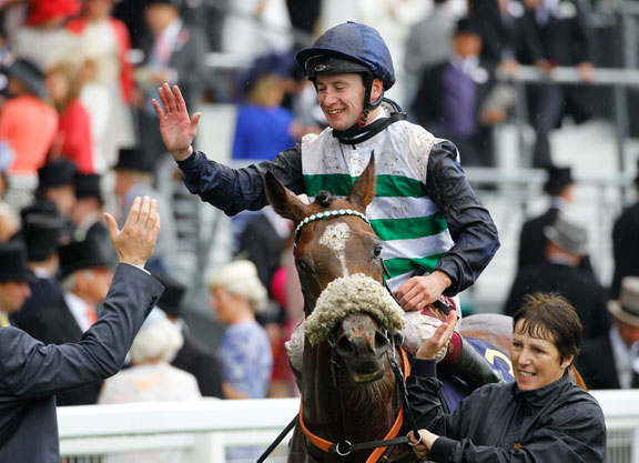 Nathaniel's Dashing Willoughby On Top In the Vase