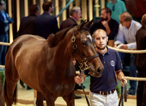 Moonlight Cloud Sister Shines In Deauville