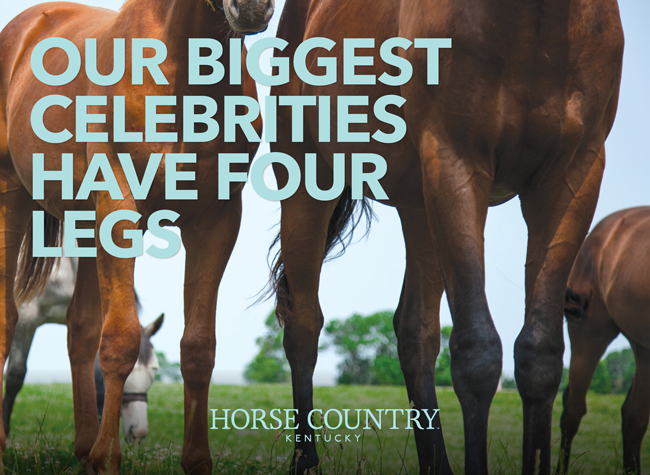 Horse Country – Celebrities – 8/21/19