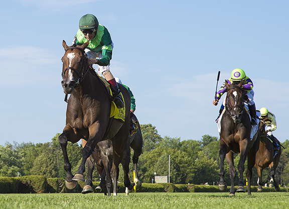 Champ Sistercharlie Wins Battle of the Browns in Diana