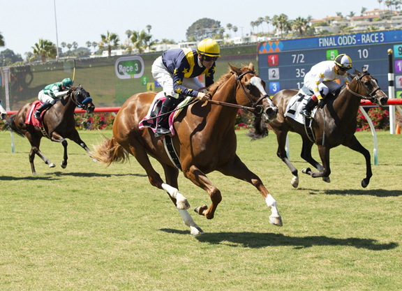 Tapit Filly Flies Home to Rising Stardom at Del Mar