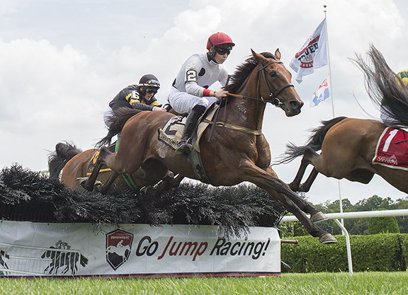 Winston C Romps in N.Y. Turf Writers