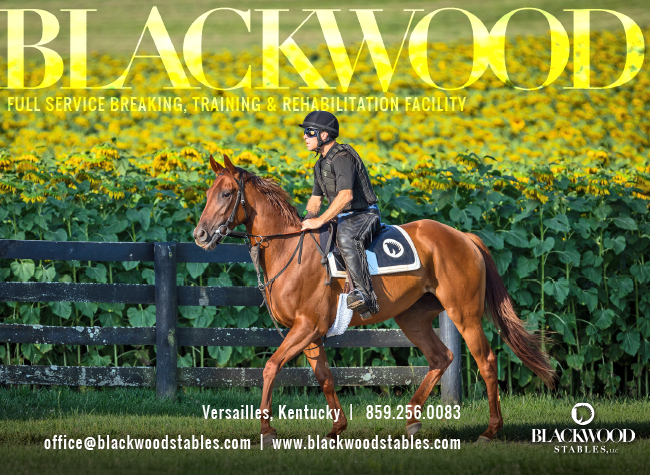 Blackwood Stables interstitial – 12/09/19