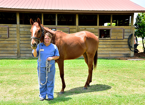 On Aftercare: Fernung and Journeyman Stud Look to Help Lowell Program at Stallion Show