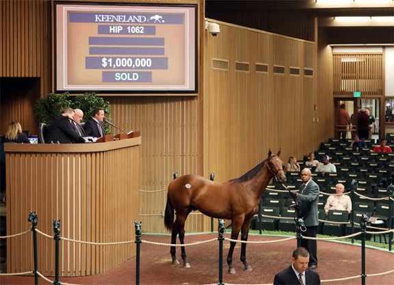 Candy Ride Colt on Top as KEESEP Book 2 Concludes