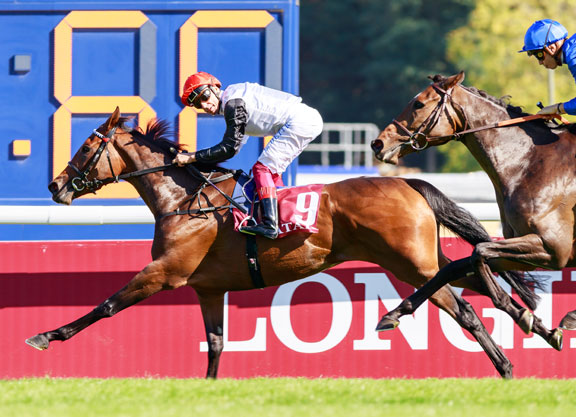 Vermeille Glory For Sea the Stars' Star Catcher