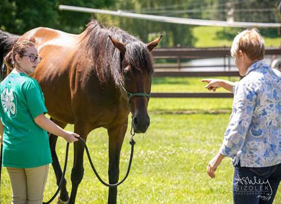Off-track Thoroughbreds Shine at Training Aspiring Jockeys