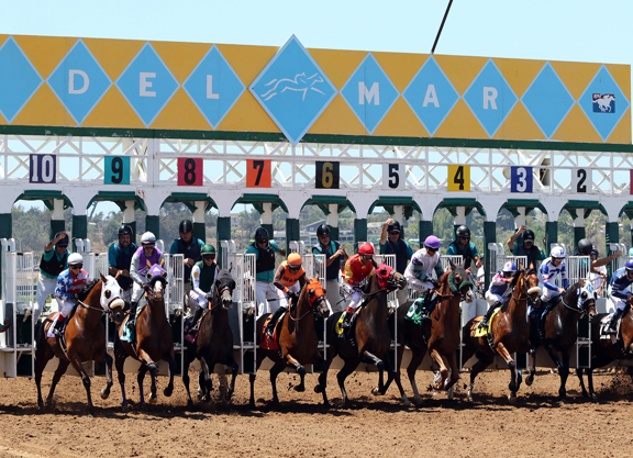 """""""Unprecedented"""" Safety Record, Main Takeaway from Del Mar Meet"""