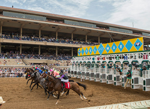 Three Horses Break Down Sunday at Del Mar