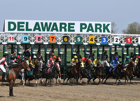 Delaware Thoroughbred Racing Commission Comes Out Against HISA