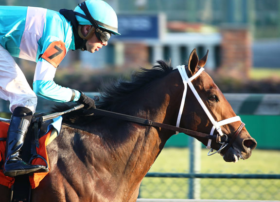 Palace Malice Half to Monomoy Girl Romps to Rising Stardom