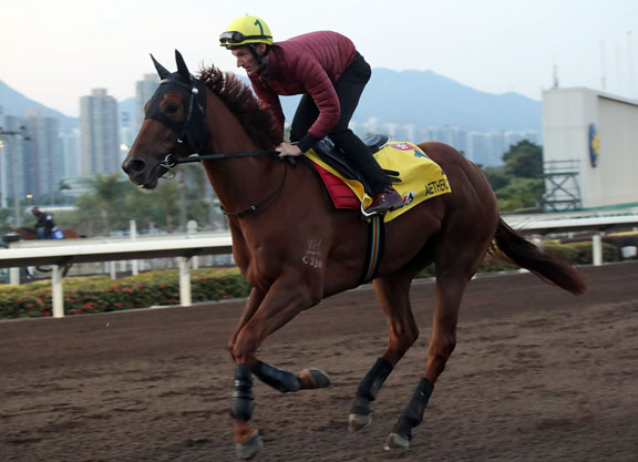 HKIR Week Is Here, a.k.a. Merry Early Christmas To Me