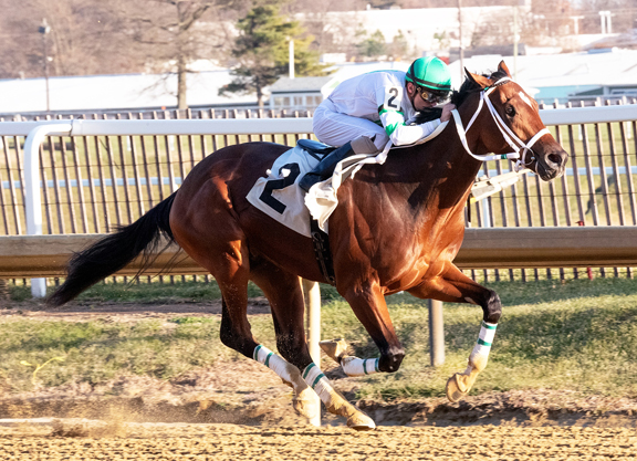 Laddie Liam Lights Up the Board in Timonium