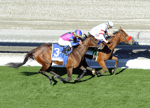Lady Prancealot Holds Slight Edge in Rodeo Drive