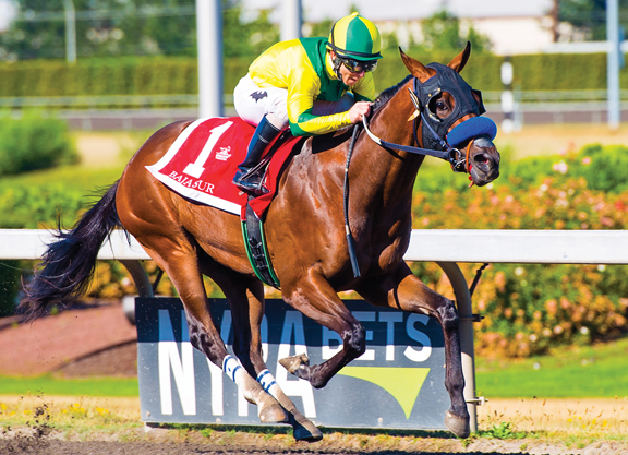 Baja Sur Named Washington Horse of the Year