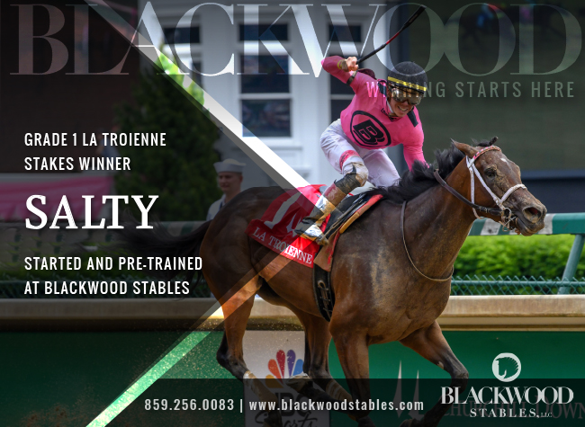 Blackwood Stables – Salty (NEW) – 2/17/20