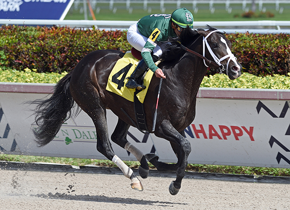 Buzzed About Liam's Map Colt Gets it Done at Gulfstream