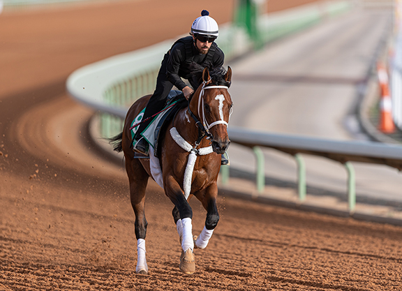 Saudi Arabia to have richest horse racing competition