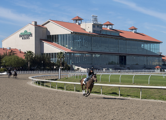 Fair Grounds Must Pay Record Fine in Clean Water Act Settlement