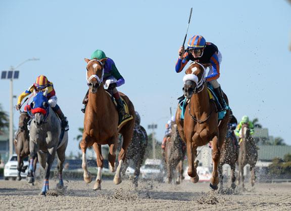 Tonalist's Shape, Spice Is Nice Rematch in Full Gulfstream Oaks