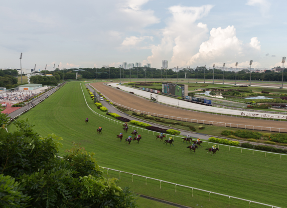 COVID-19 Update: Singapore Racing Facing One-Month Shut Down