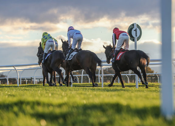 British Government Gives Racing The Green Light